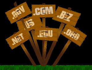 domain-names-dominios